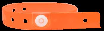 Trans Orange